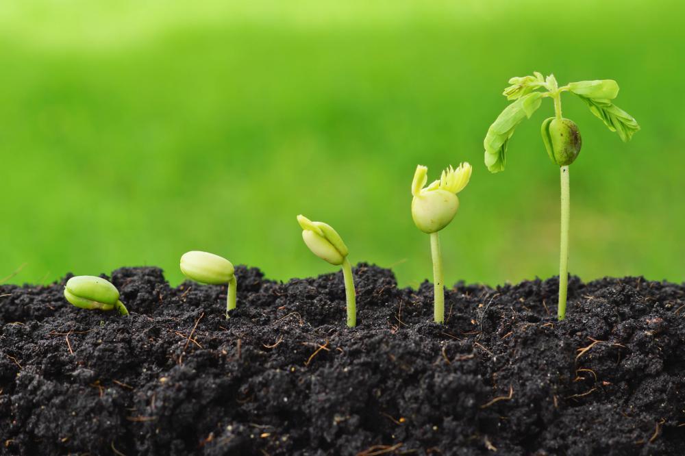 Photo of Нов гарантен фонд за земјоделците