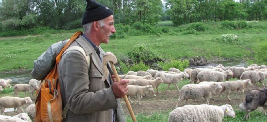 Photo of Никој не сака да ја работи оваа професија во Македонија, а се нуди плата и до 500 евра