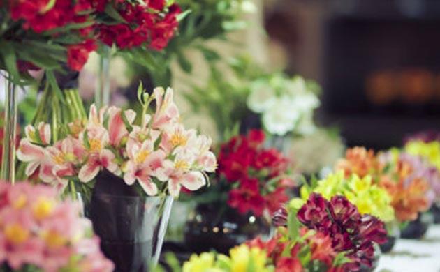 Photo of Народната банка ќе потроши 4000 евра за цвеќе и цветни аранжмани