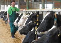 Финансиска поддршка за одгледување добиток