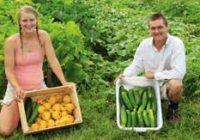 Повеќе пари од државата за започнување сопствен бизнис бараат земјоделците