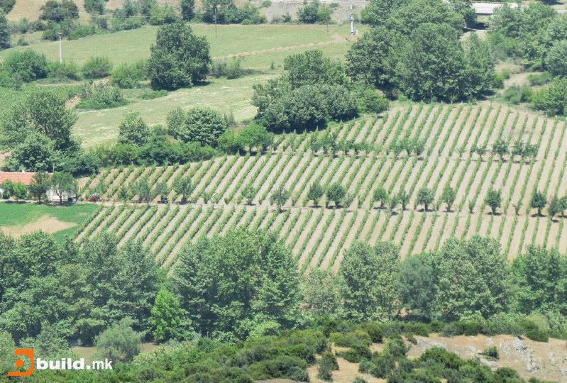 Photo of Со европски пари земјоделците ќе добијат нови системи за наводнување