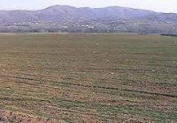 Има уште само неколку дена за да се аплицира за закуп на државно земјиште до 3 хектари