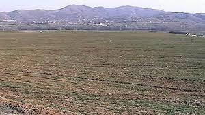 Photo of Има уште само неколку дена за да се аплицира за закуп на државно земјиште до 3 хектари