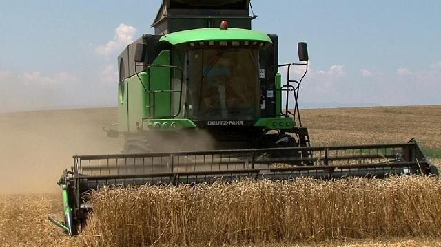 Photo of Дали зголемувањето на цените на житото во САД може да ја зголеми нивната вредност и во Европа?