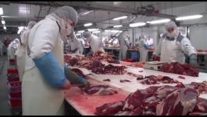 Photo of 1200 тони месо од Канада и Бразил, без царина завршиле во промет