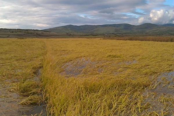 Photo of Избрани 12 локации за консолидација на земјоделско земјиште
