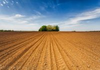 Полјоделство – календар за месец Март