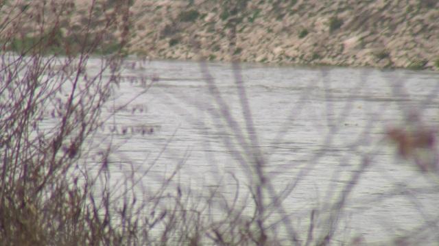 Photo of Двојно зголемени водотеците на повеќето реки низ Македонија