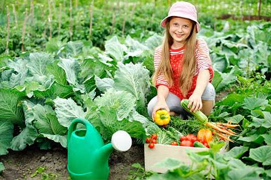 Photo of Градинарство – календар за месец април