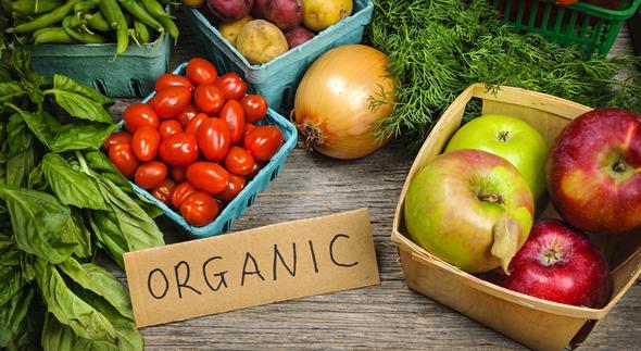 Photo of Органска храна – агро бизнис во подем