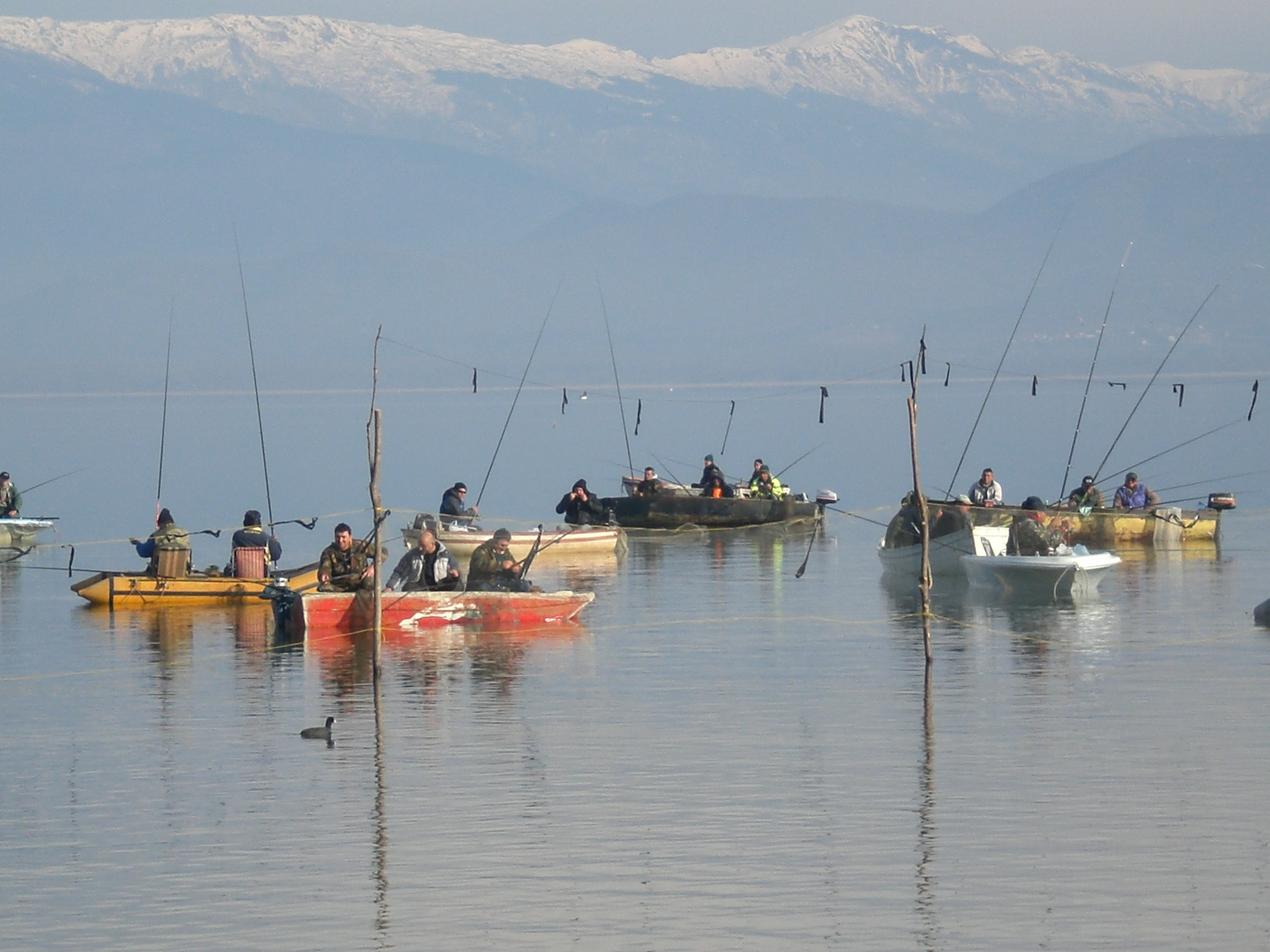 Photo of МЗШВ: Се забранува вршење на риболов во периодот на природен мрест на рибите