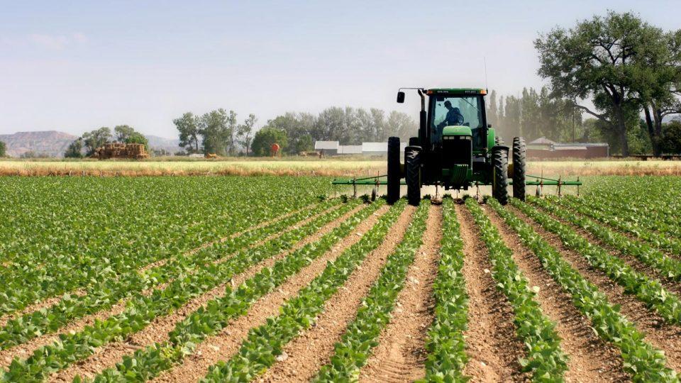 Photo of Земјоделски култури ќе го чистат нафтениот талог