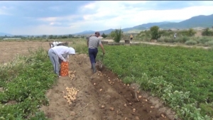Photo of Поедноставни даночни постапки и повеќе пари кај земјоделците