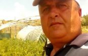Мујо Фазлич, државата мора да направи берза на земјоделски производи  за да им се исплати трудот на земјоделците