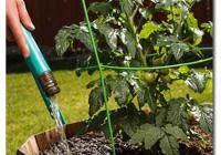 Колку и како да се наводнуваат зеленчукот и растенијата во текот на пролетта и летото?