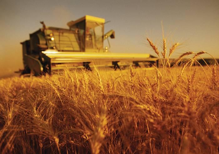 Photo of Земјоделците предлагаат решенија за проблемите со пласманот и штетите од климатските промени