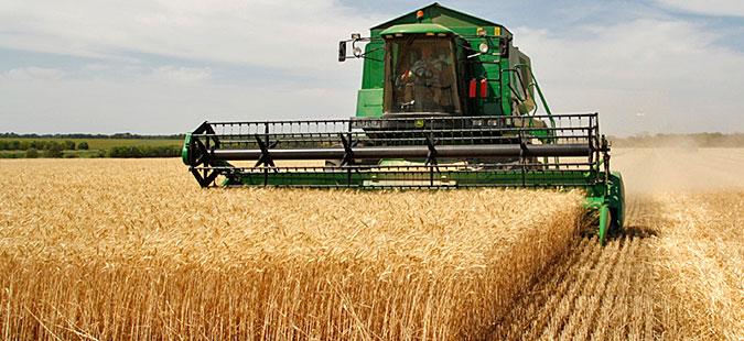 Photo of Почна жетвата на јачменот во Овче Поле