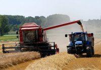 Големите фарми во ЕУ обработуваат повеќе од половина земјоделско земјиште
