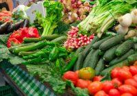 КОСОВСКА РАМПА ЗА МАКЕДОНСКОТО ОВОШЈЕ И ЗЕЛЕНЧУК: Штетите ќе ги трпат земјоделците