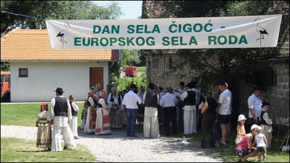 Photo of Во Чигоч, првото европско село на штркови, има повеќе штркови од жители!