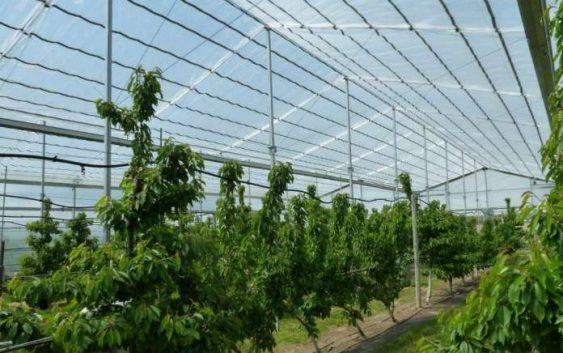 Современата технологија недостапна за земјоделците