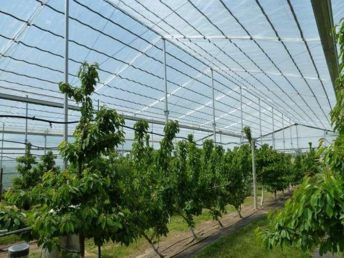 Photo of Современата технологија недостапна за земјоделците