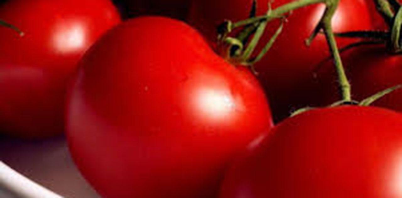 Photo of Земјоделците се жалат на променливи откупни цени на градинарските култури