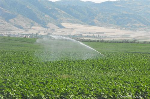 Николовски обвини дека системите за наводнување со години биле запоставувани