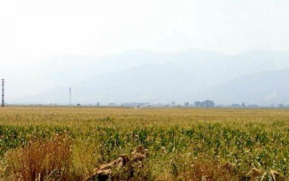 Наскоро јавен оглас за доделување земјоделско земјиште на сточари
