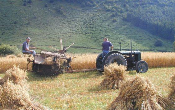 Ракхманин: На македонското земјоделство му се потребни иновации и дигитализација