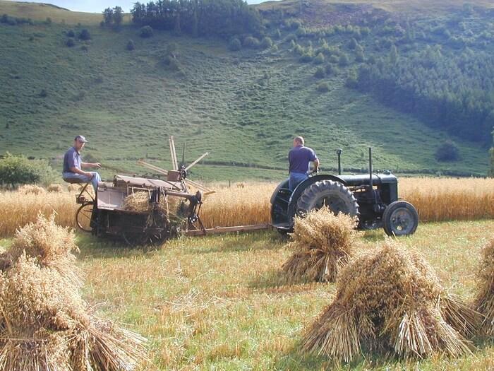 Photo of Ракхманин: На македонското земјоделство му се потребни иновации и дигитализација