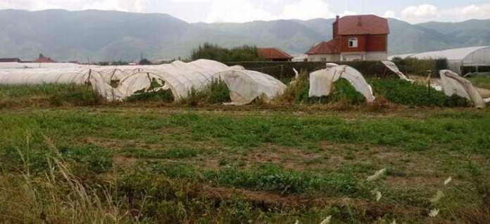 Photo of Колкави се штетите во Струмичко ќе се знае по проценките на терен