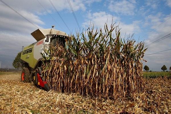 Photo of На многу европски земјоделци им се заканува банкрот поради сушата