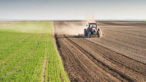Климатските промени ги јадат струмичките ,,чушки и френки,,  и го празнат џебот на земјоделците