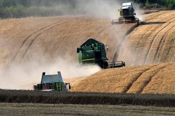 Photo of Се зголемија цените за сите житни договори на светските берзи