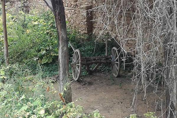 Photo of Македонија без стратегија за рурален туризам