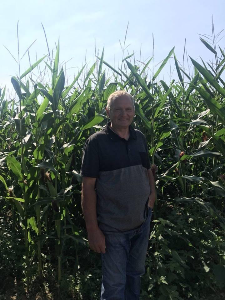 Photo of Пченката носи двојно повеќе ќар од пченицата, препорачува земјоделецот  Јосиф Барашлиевски