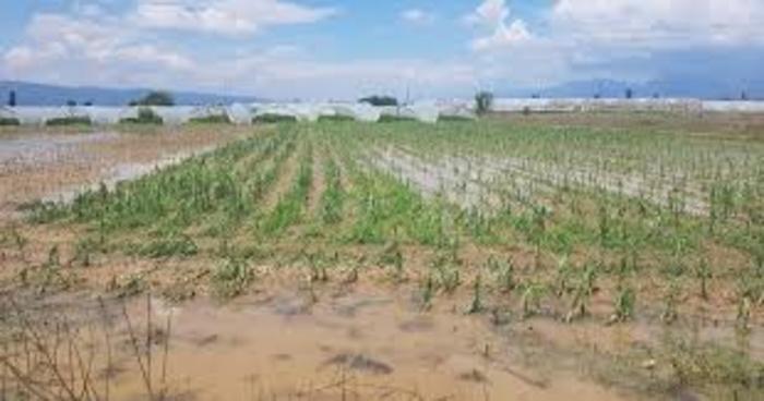 Photo of Укината спорната уредба, наскоро обесштетување од непогодите во 2016 и 2015 година