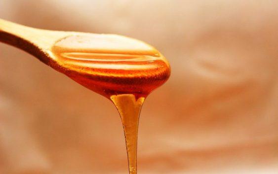 Штипските пчелари и оваа година имаат помали приноси на медот