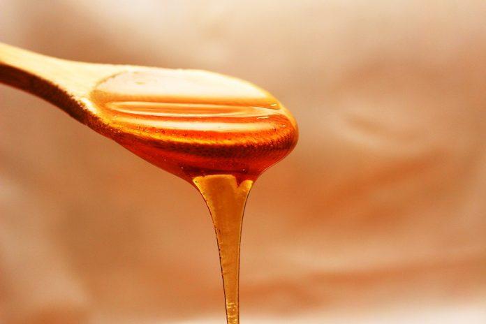 Photo of Штипските пчелари и оваа година имаат помали приноси на медот