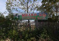 """Сигурниот пласман на млекото во""""Битолска млекара"""" ни го отвори патот за унапредување на семејниот бизнис, вели  Владимир Небрежанец од краварската фарма """"Милко ХФ"""""""