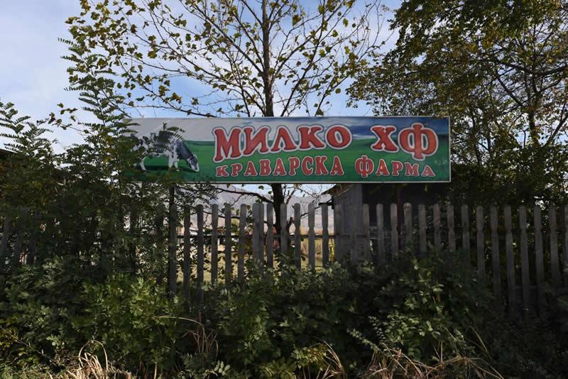 """Photo of Сигурниот пласман на млекото во""""Битолска млекара"""" ни го отвори патот за унапредување на семејниот бизнис, вели  Владимир Небрежанец од краварската фарма """"Милко ХФ"""""""