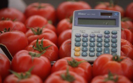 Двајца сомборци развиле бизнис со шери домати, еве што прават