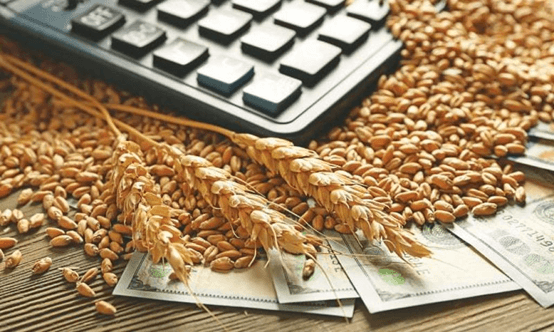 Photo of Извозните цени на руската пченица го продолжиле минатонеделниот пад