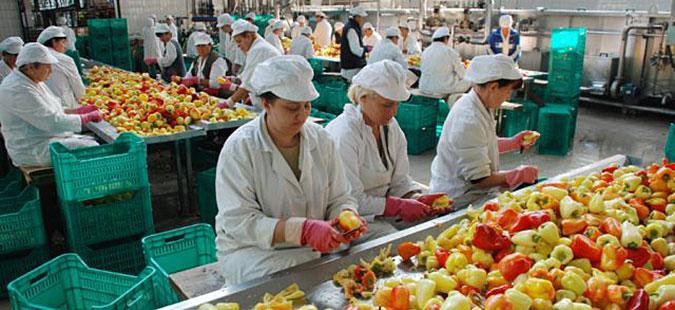 Photo of Поповолна состојбата во преработувачката индустрија, сметаат раководителите на фирмите