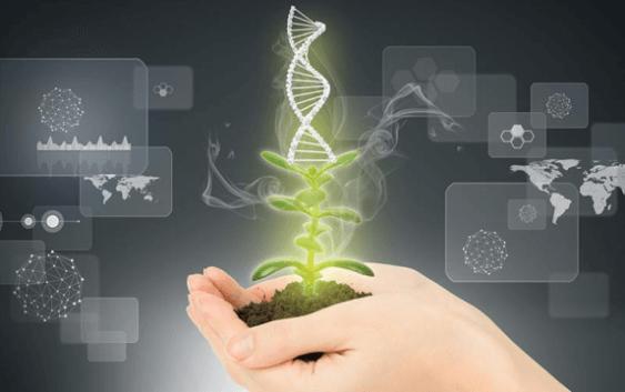 Трибина за регулативата за генетски модифицираната храна