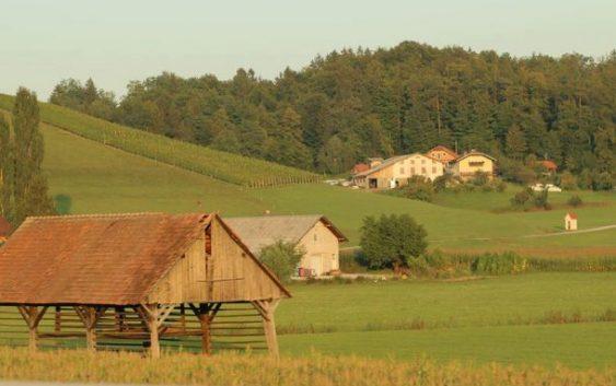 Словенечките земјоделци имаат искористено 3 милијарди евра европски пари за аграрот