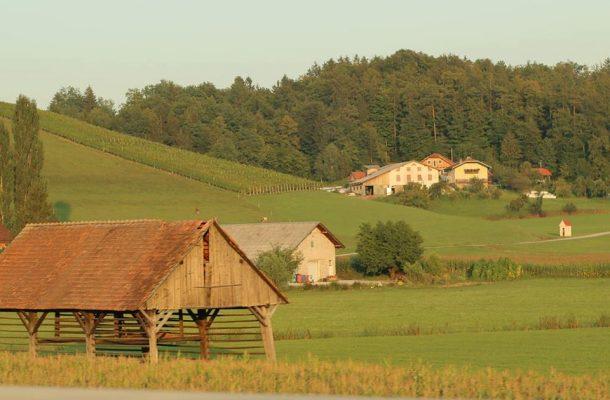 Photo of Словенечките земјоделци имаат искористено 3 милијарди евра европски пари за аграрот