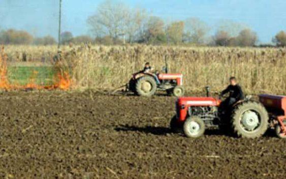 Исплатени 99 отсто од земјоделските субвенции